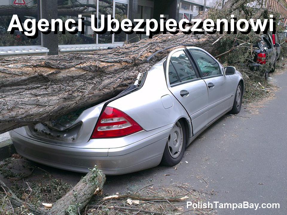 Polscy Agenci Ubezpieczeniowiw Tampa Bay:Citrus, Hernando, Hillsborough, Manatee, Pasco, Pinellas, Sarasota