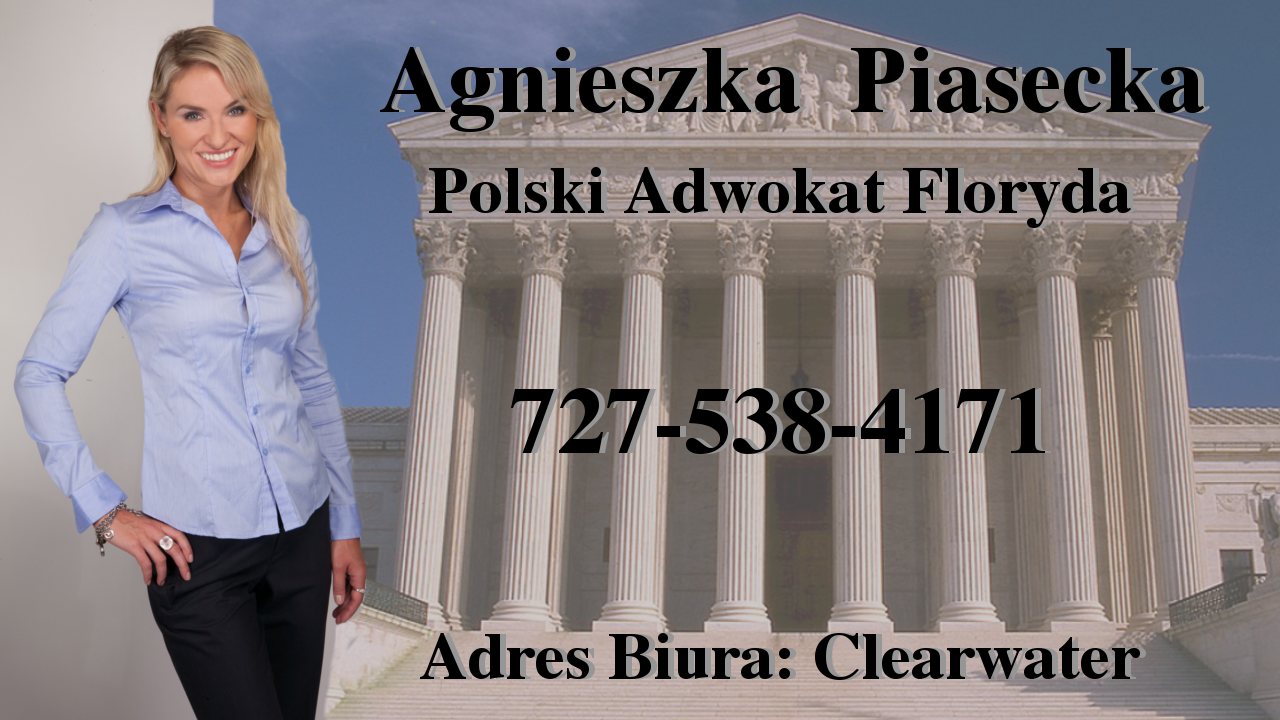 Polscy Prawnicy w Tampa Bay: Citrus, Hernando, Hillsborough, Manatee, Pasco, Pinellas, Sarasota