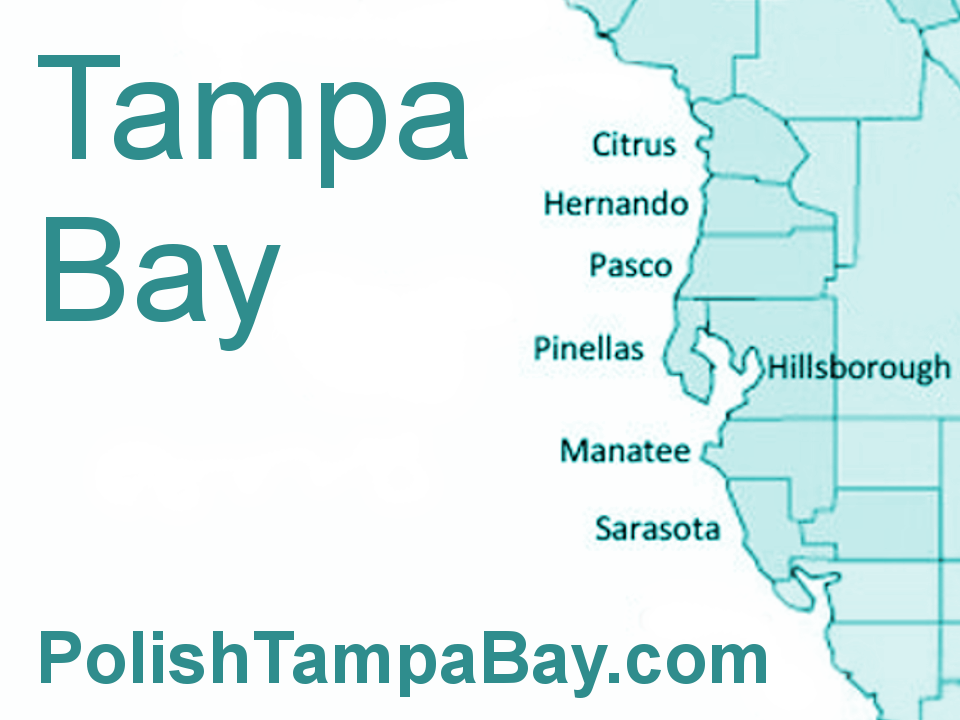 Tampa Bay Metropolitan Area Map: Tampa Bay Metropolitan Area 100,000 + Tampa St. Petersburg Clearwater Brandon Spring Hill 10,000 + Apollo Beach Bayonet Point Bloomingdale Citrus Park Cheval Dunedin Egypt Lake-Leto East Lake East Lake-Orient Park Elfers Fish Hawk Greater Carrollwood Greater Northdale Gulfport Holiday Hudson Jasmine Estates Keystone Lake Magdalene Land O' Lakes Largo Lealman Lutz New Port Richey Mango Oldsmar Palm Harbor Palm River-Clair Mel Pinellas Park Plant City Riverview Safety Harbor Shady Hills Seminole Sun Center Tarpon Springs Temple Terrace Thonotosassa Town 'n' Country Trinity Valrico Wesley Chapel West Lealman Westchase Zephyrhills Counties in the Tampa Bay Area Citrus County Hernando County Hillsborough County Manatee County Pasco County Pinellas County Sarasota County