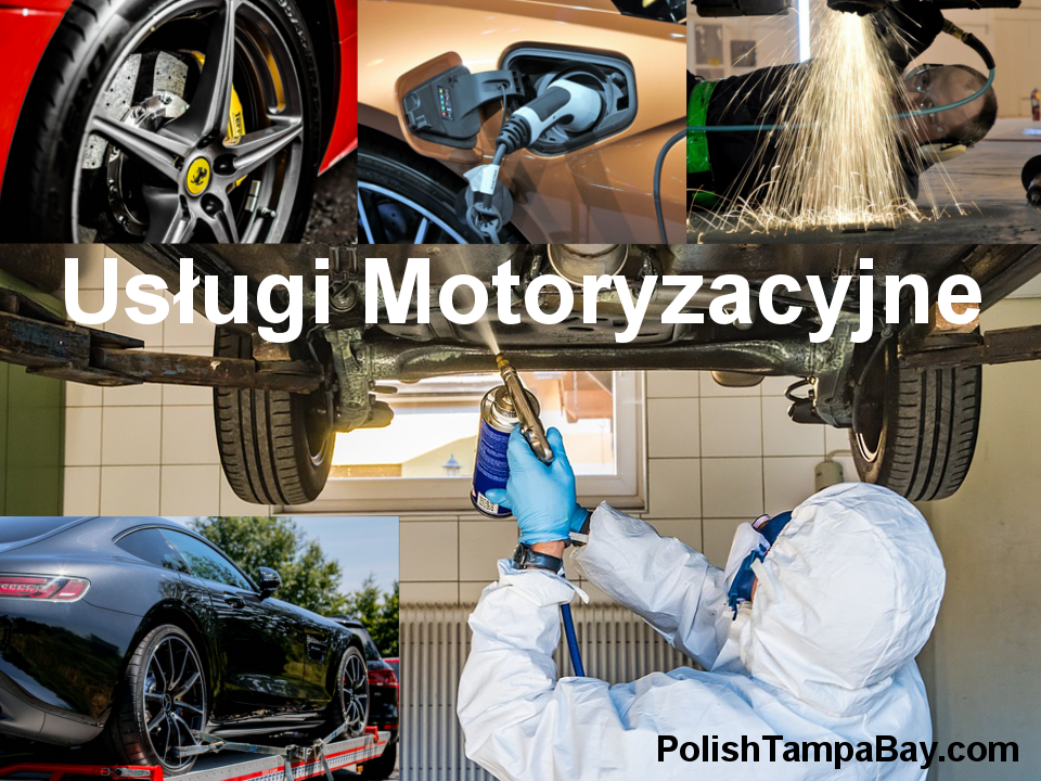 Polskie Usługi Motoryzacyjnew Tampa Bay:Citrus, Hernando, Hillsborough, Manatee, Pasco, Pinellas, Sarasota